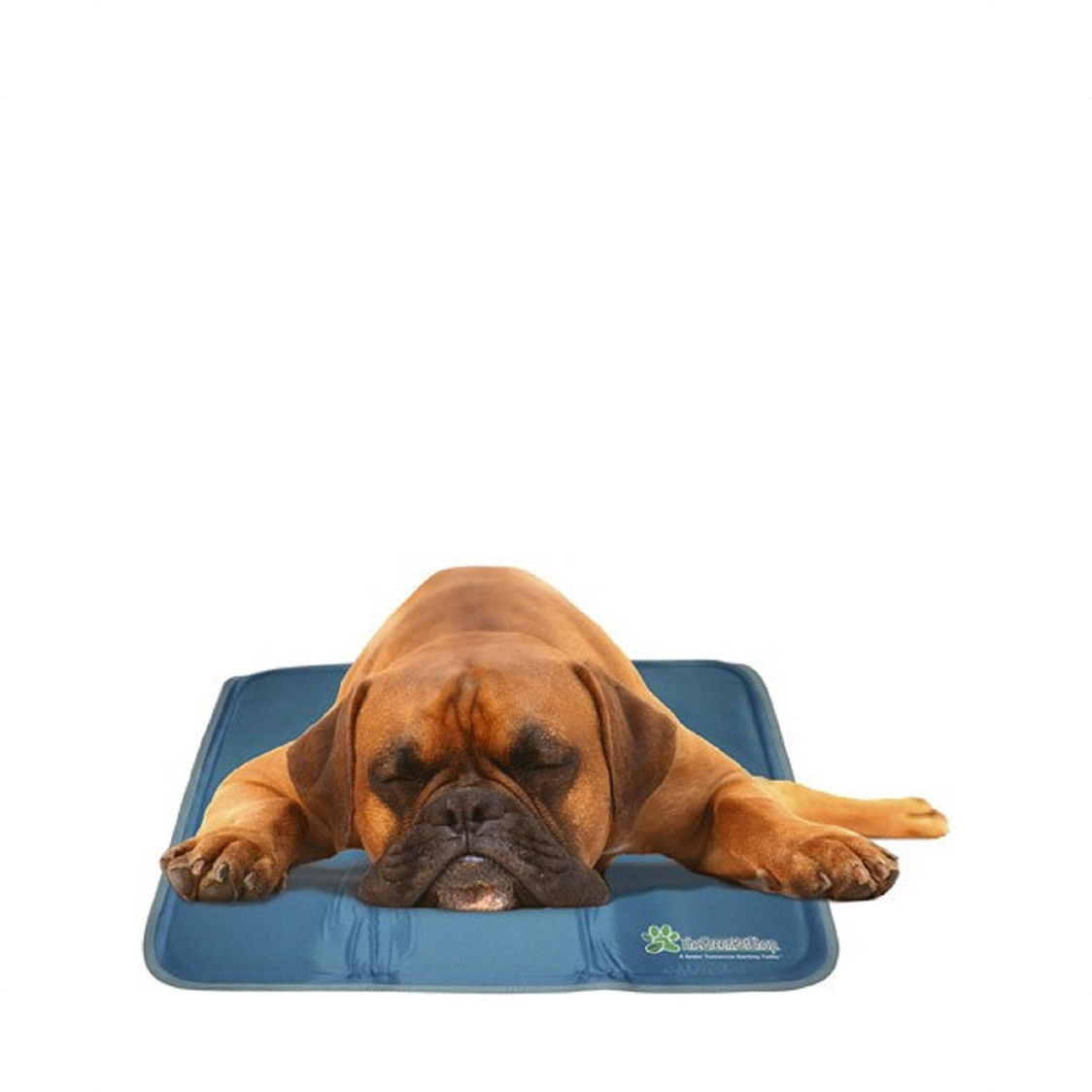 Cool Pet Pad MediumLarge