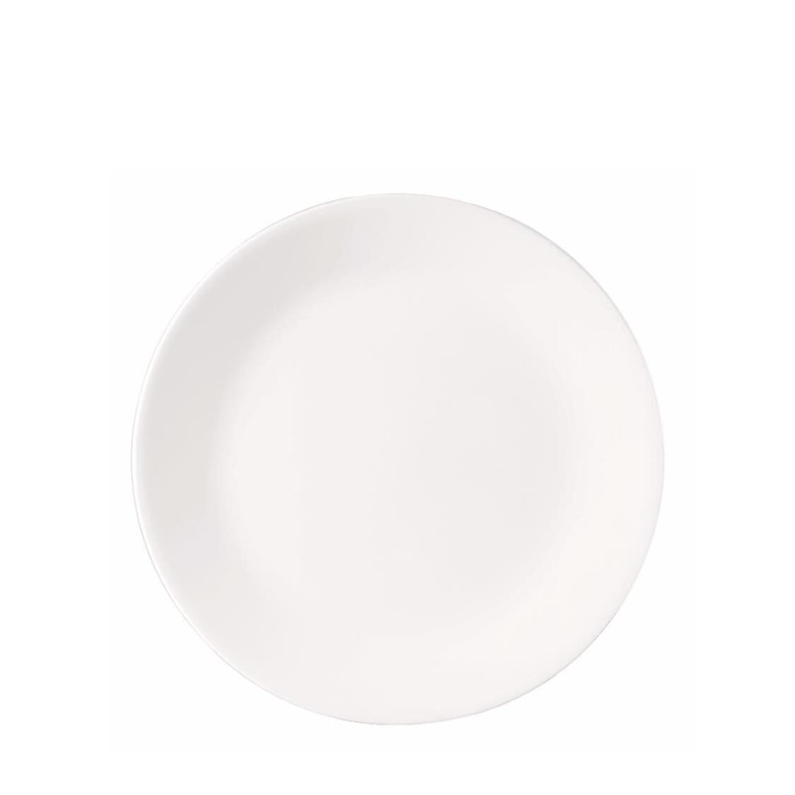 Dinner Plate Winter Frost White