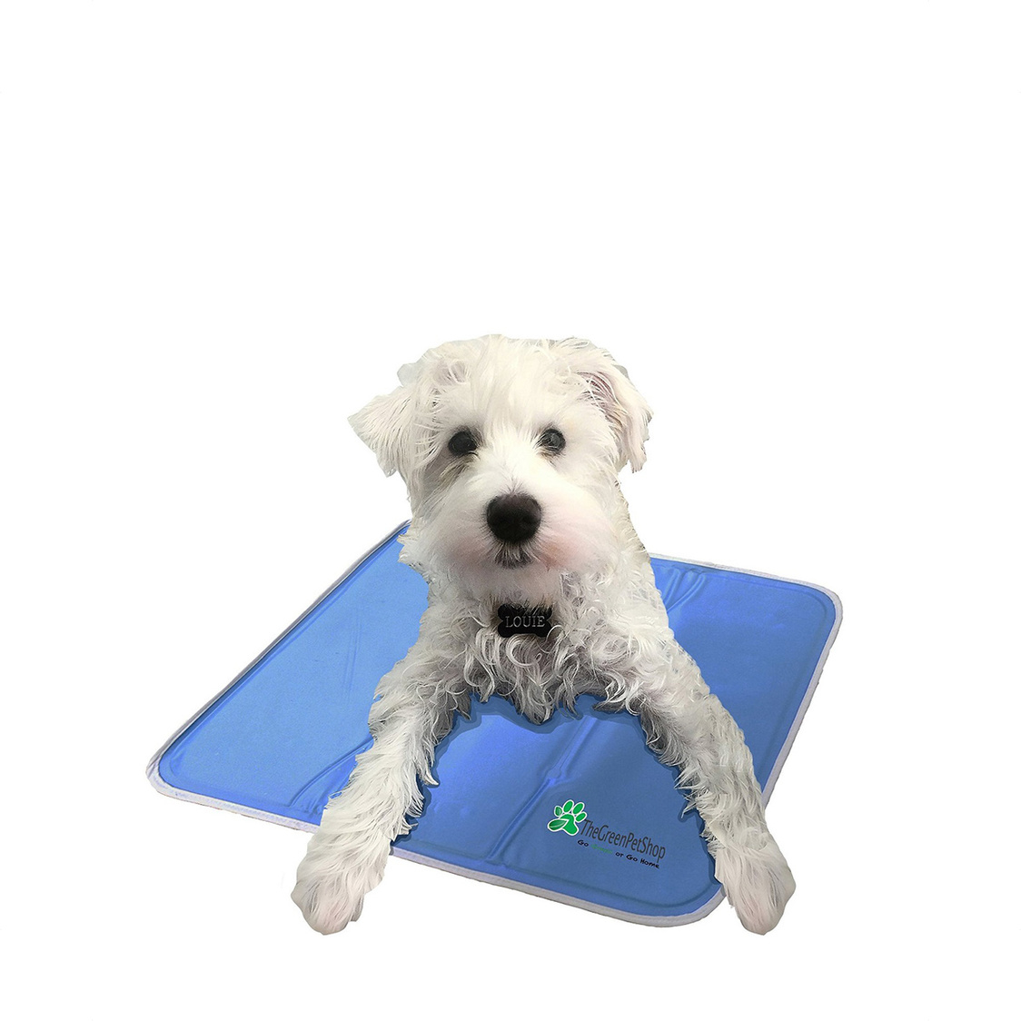 Cool Pet Pad Medium