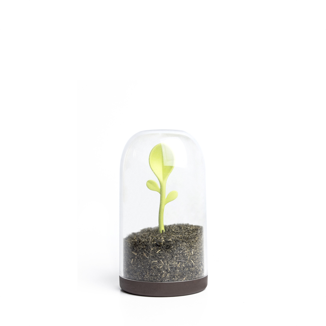 Sprout Jar Container and Spoon